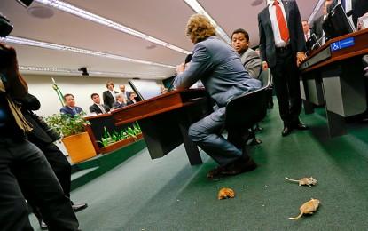 Hugo Motta: CPI vai seguir firme para encontrar os verdadeiros ratos que corroeram a Petrobras