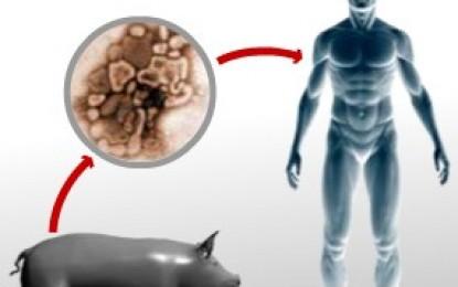 VELA VÍDEO- H1N1: idoso com suspeita de gripe suína é internado no Hospital Regional de Sousa