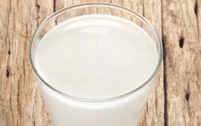 Tomar leite com remédio corta o efeito do medicamento?