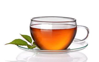 Anvisa encontra substâncias irregulares e insetos vivos dentro de grande marca de chá