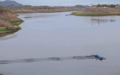 VEJA VÍDEO: Dnocs abre comportas do açude de Boqueirão e libera água para Acauã