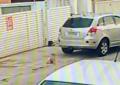 Fantástico explica como um bebê de 11 meses foi parar em uma situação alarmante