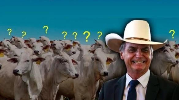 O novo slogan do gado bolsonarista